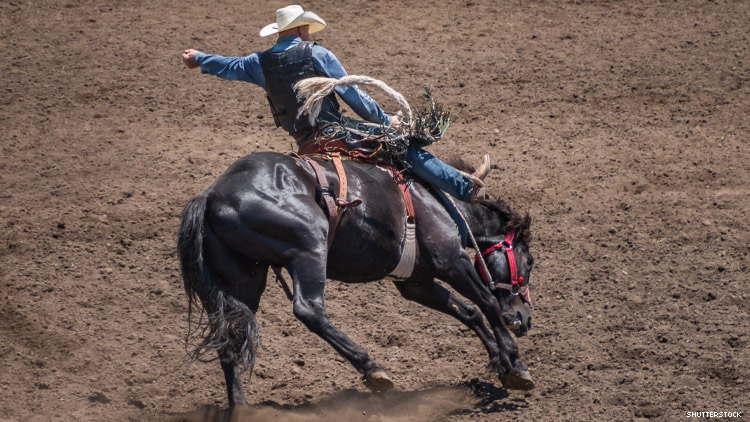 Bronco riding at rodeo