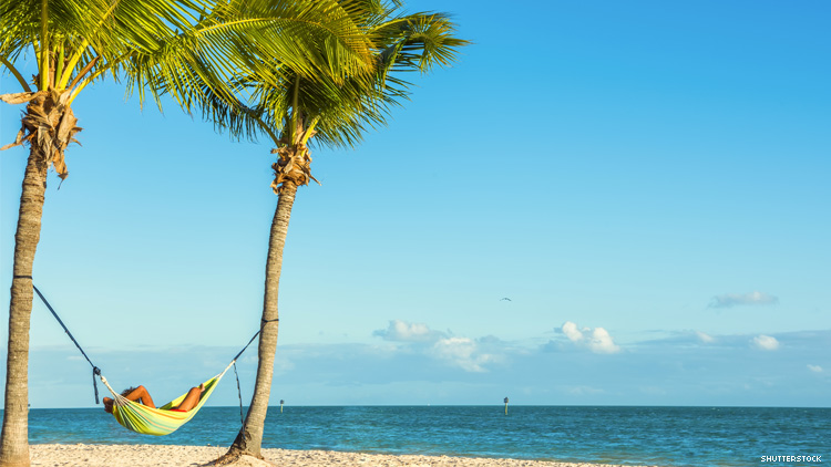 Man in hammock hung between two palm trees on Key West beach