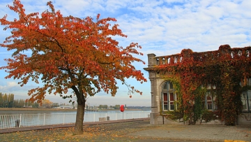 Fall Escapes: Antwerp's Architecture, Museums, and Cuisine Beckon