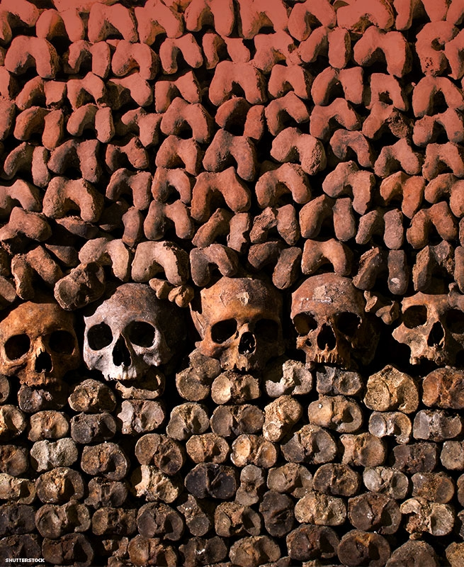 Bones and skulls stacked in the Paris catacombs
