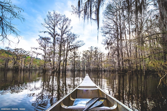 Caddo Lake State Park in Texas