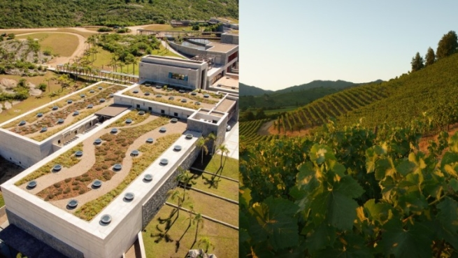 Check out the World's Best Wineries