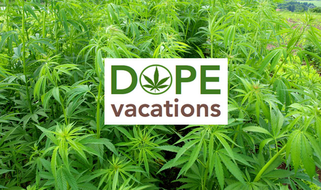 Are Pot Vacations the Next Big Thing?