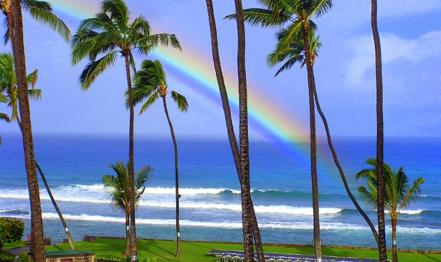 Hawaii Senate OK's Marriage Equality; On to House