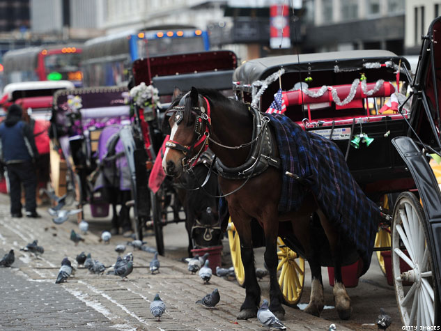Will NYC Send Horses-Drawn Carriages to Glue Factory?