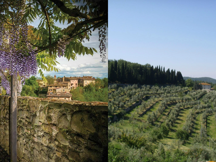 Stay at Salvatore Ferragamo's Tuscan Resort for Olive ...