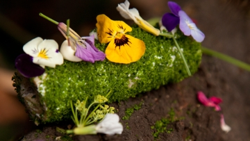 """Chilean Chef Francisco Madiola Shares His Recipe for his Stunning Dish, """"Forest"""""""